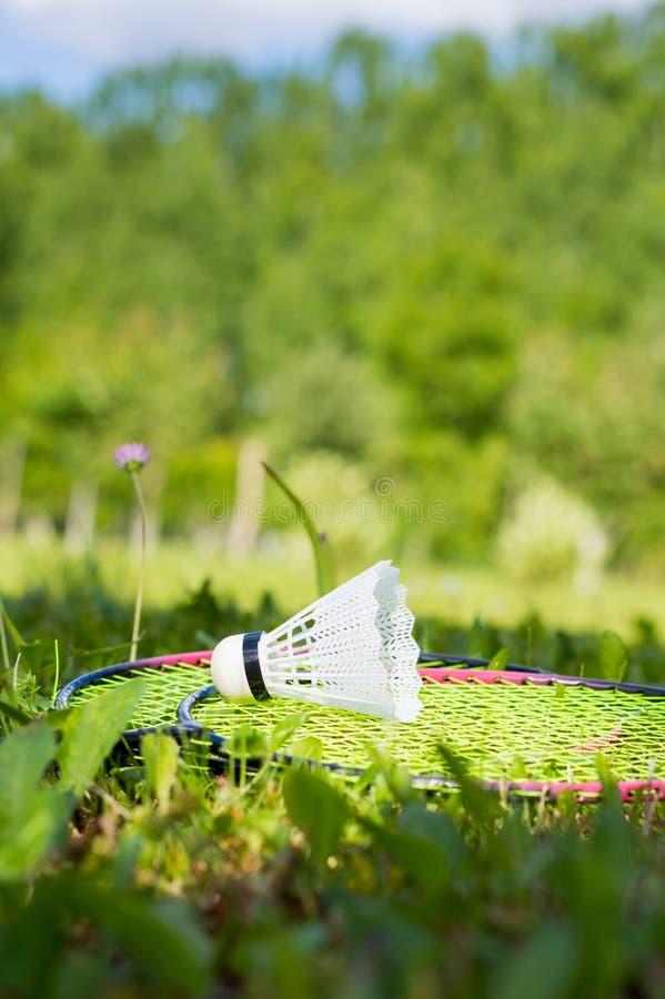 羽毛球乐趣 库存照片