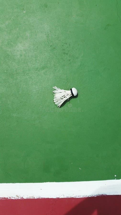 羽毛球在绿色背景中 免版税库存照片