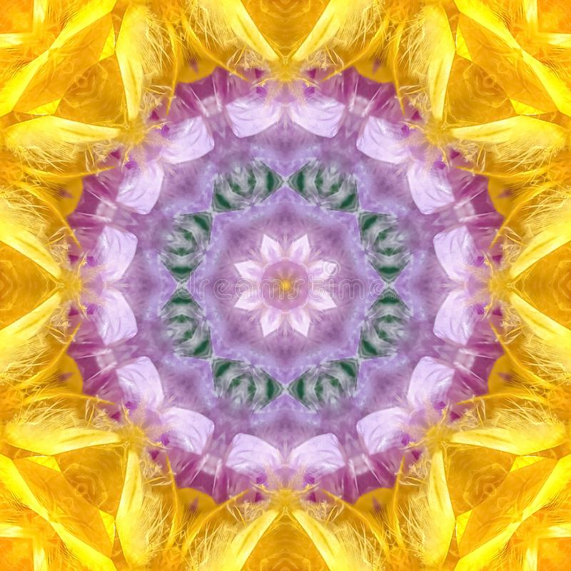 羽毛的正方形充满活力的颜色在围巾的 皇族释放例证