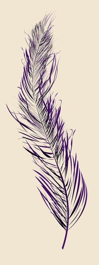 羽毛紫色 库存例证