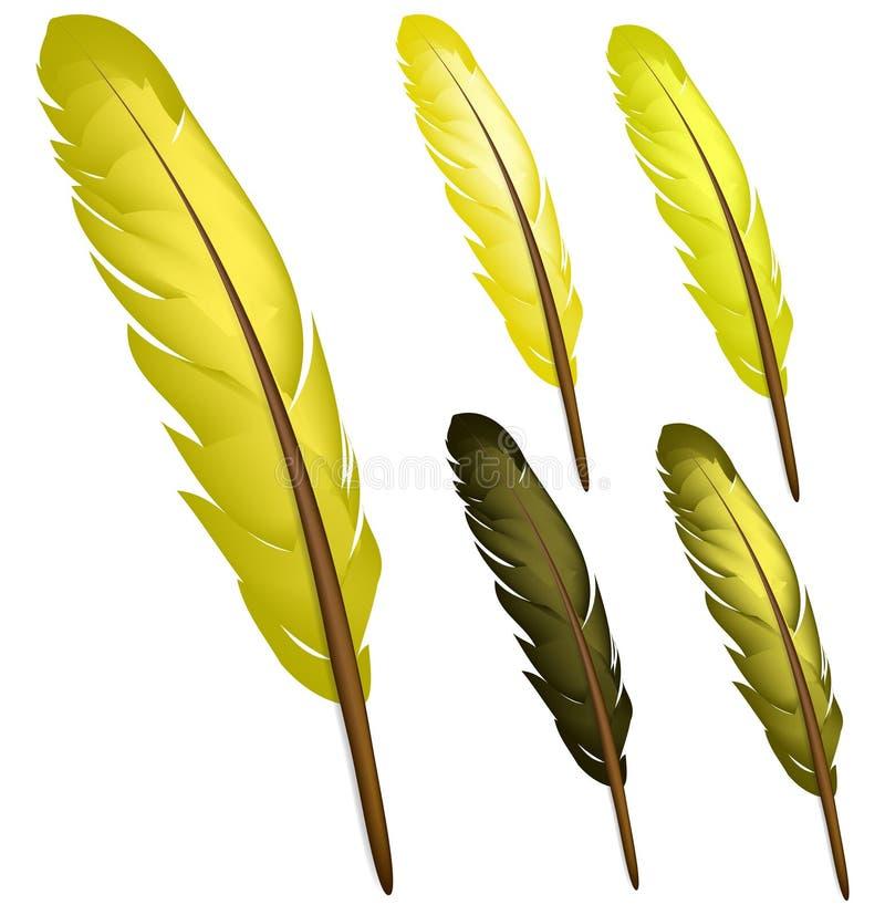 羽毛黄色 皇族释放例证