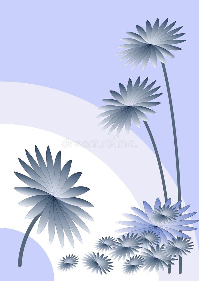 翠菊背景蓝色 免版税库存照片