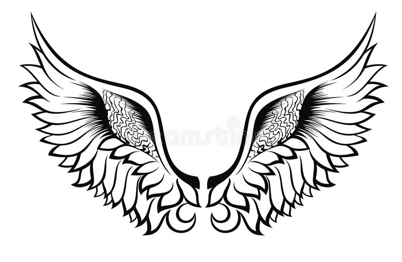 s字体v字体图片纹身内容绘制mfc二维分享曲线图图片