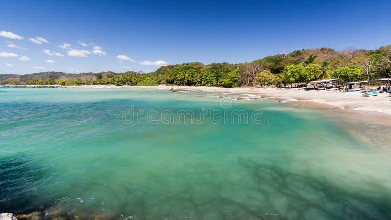 翼果海滩哥斯达黎加 库存照片