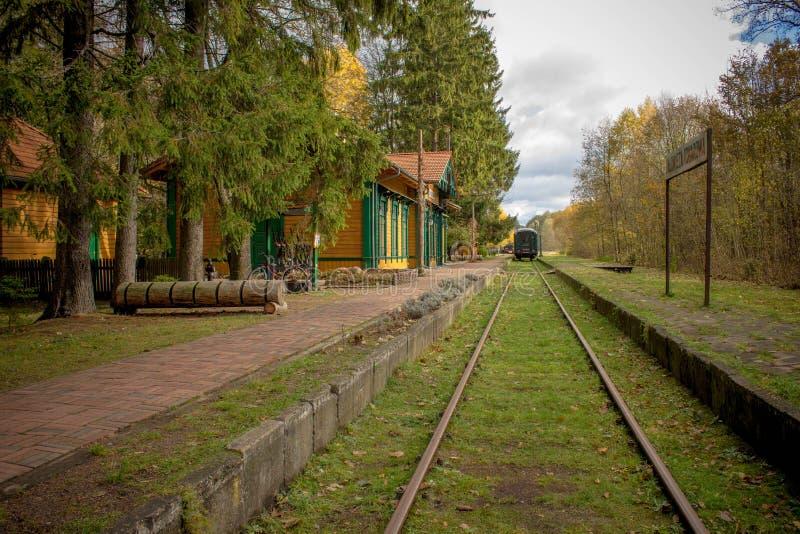 老与火车的葡萄酒火车站在波兰, Bialowieza, 免版税库存照片
