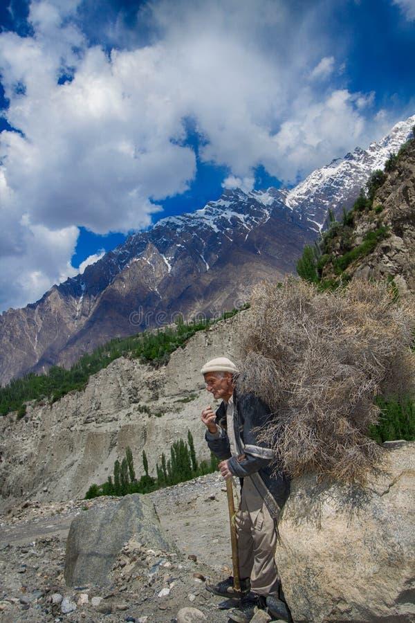 老人运载干木柴,巴基斯坦 免版税图库摄影