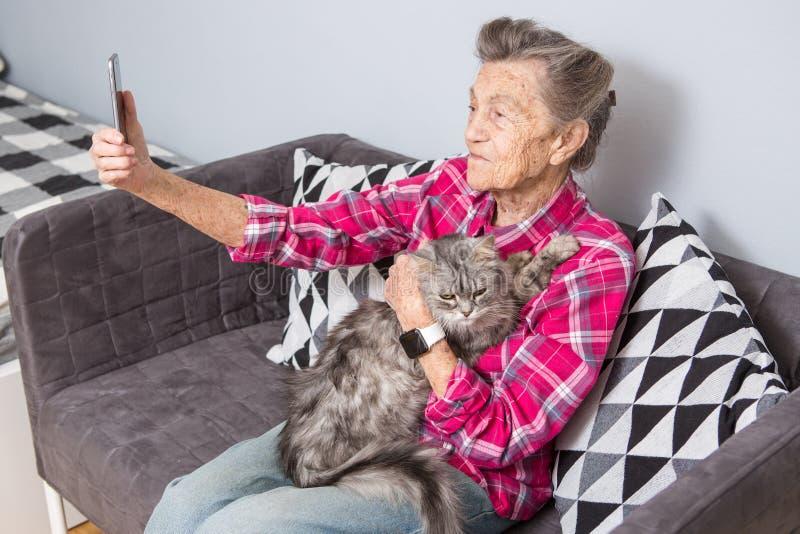 老人usestechnology 成熟满足的喜悦微笑活跃灰色头发白种人皱痕妇女坐的客厅 免版税库存图片