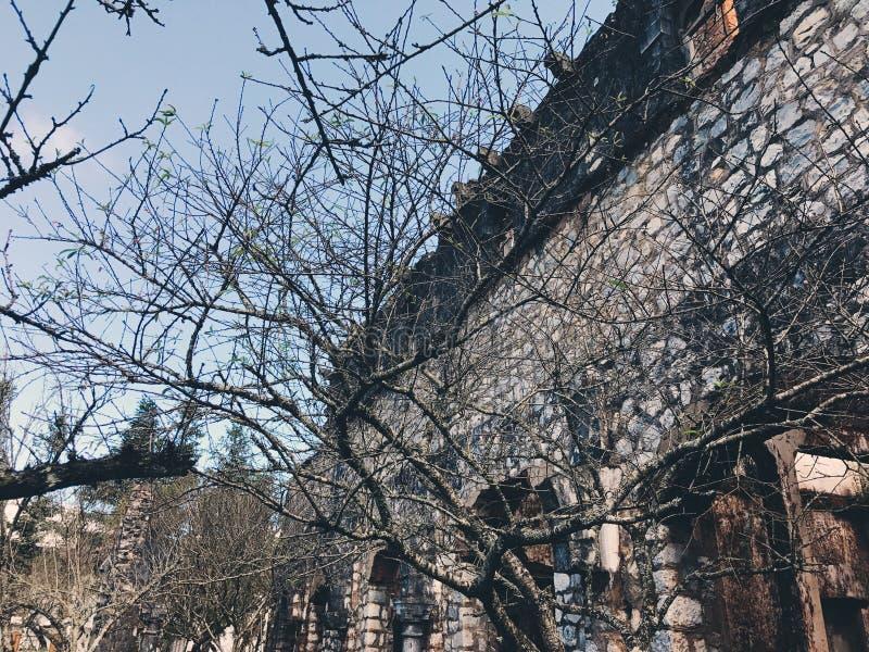 老修道院 免版税库存照片