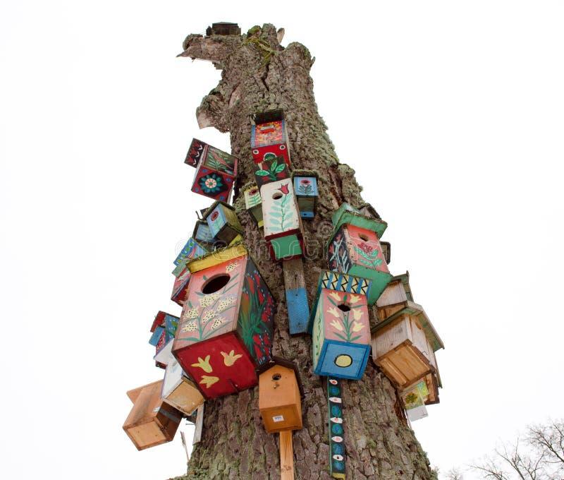 老停止的树干五颜六色的鸟巢箱吊 库存图片
