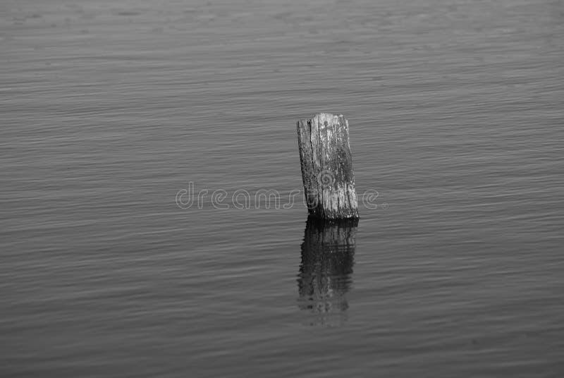 老停泊杆在湖 免版税库存图片
