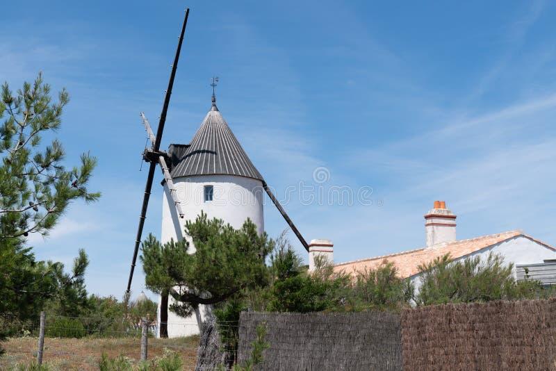 老努瓦尔穆捷买主法国风车典型的海岛  免版税库存图片