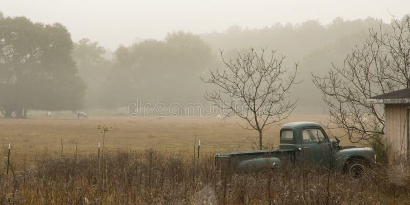 老卡车和马在薄雾 免版税库存照片