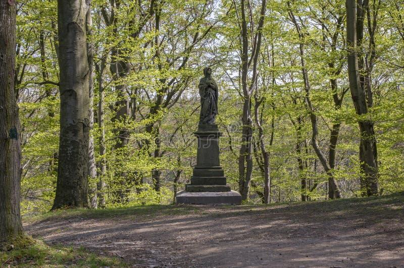 老历史的栗子胡同在春季期间的Chotebor,在两行,浪漫场面的树 库存照片