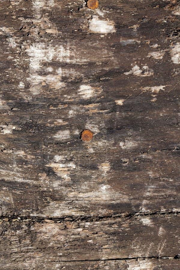 老可能某事对木的表面写道 库存照片
