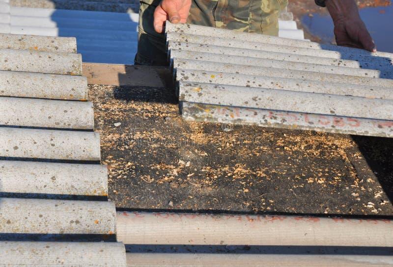 老和危险清除石棉 盖屋顶的人替换损坏的石棉瓦片 修理石棉屋顶 免版税库存图片