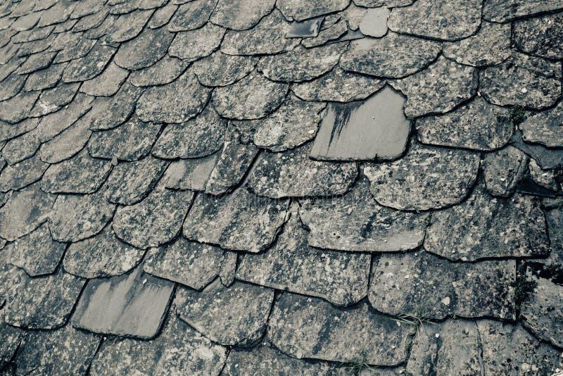 老和土气石板屋顶,与青苔的板岩纹理 库存图片