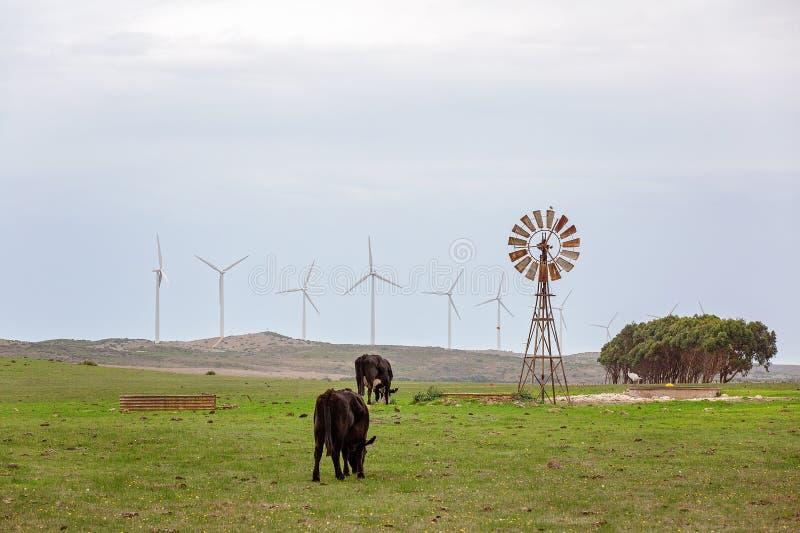 老和新在利用风力 免版税图库摄影