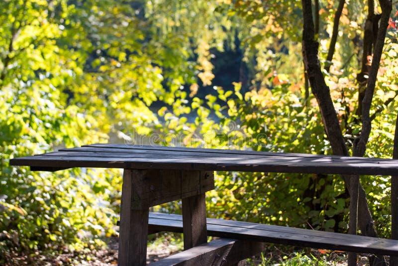 老土气木公园桌在公园 免版税图库摄影