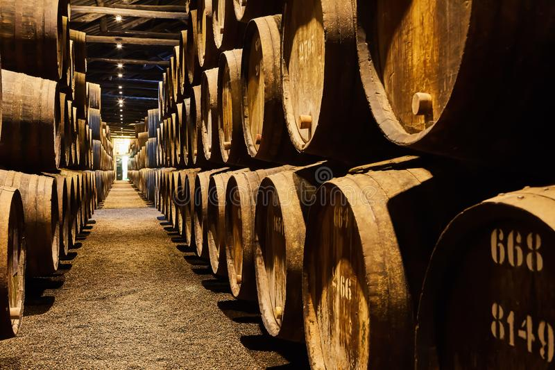 老在意大利,波尔图,葡萄牙,法国变老了传统木桶用在凉快和黑暗的地窖里排队的穹顶的酒 免版税库存图片