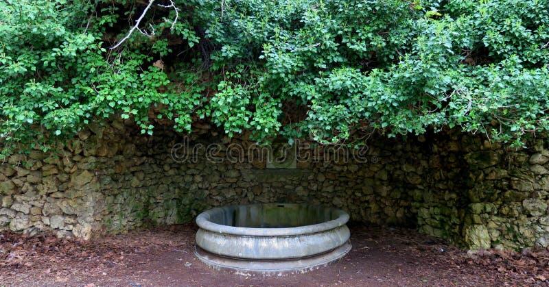 老地方,一旦这是女王/王后的卫生间,水从狮子的头流动了并且填装了浴 免版税库存图片