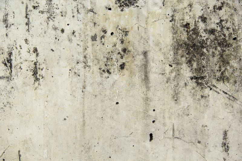 老地板水泥背景  库存图片