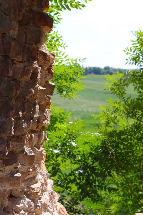 老城堡墙壁和天际 库存照片