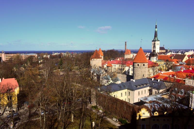 老塔林和它的老红色屋顶,爱沙尼亚 免版税图库摄影