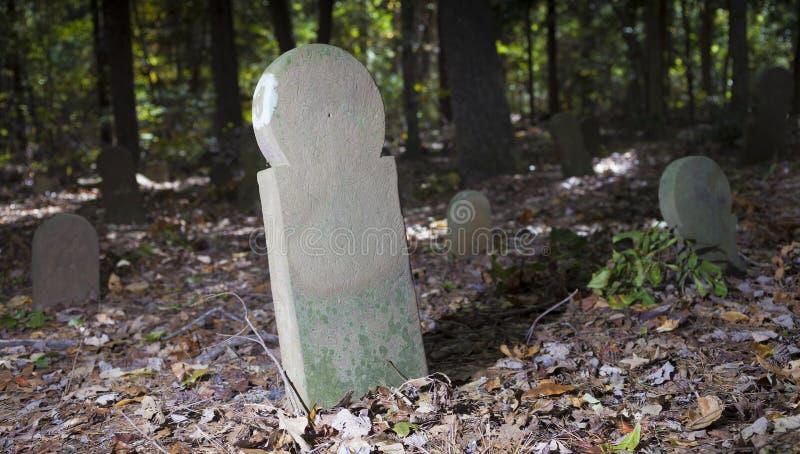 老墓碑在北卡罗来纳 免版税库存图片