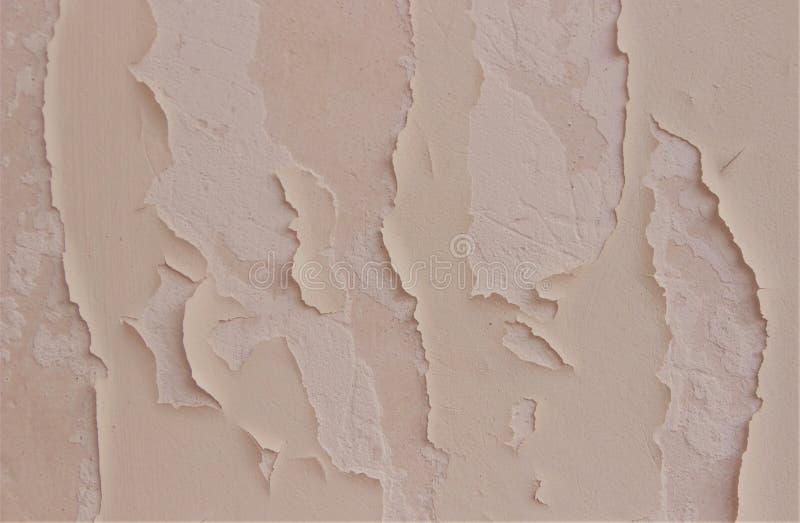 老墙壁的纹理有剥的油漆 桃红色桃子招标颜色 r ?? 免版税图库摄影
