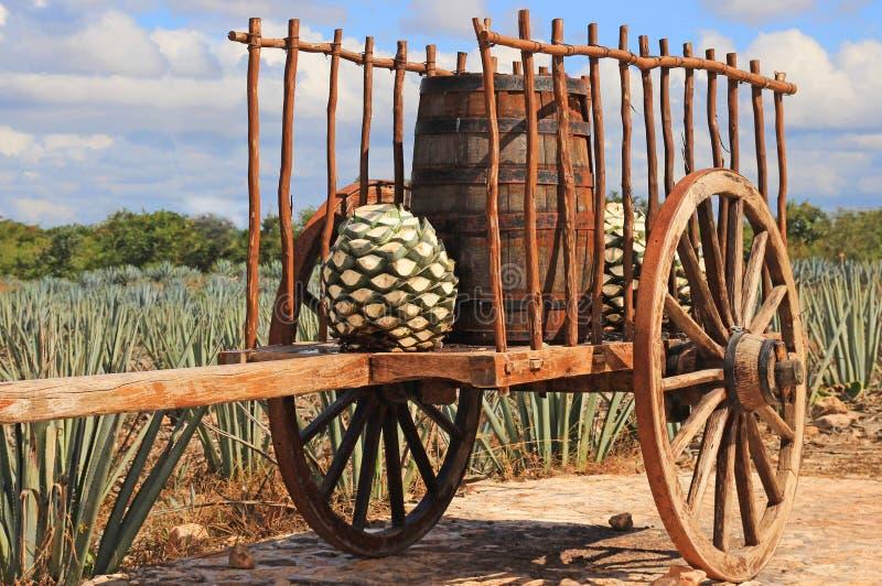 老墨西哥拖车 免版税库存图片