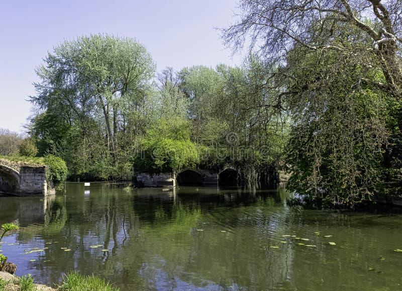 老多曲拱石头城堡桥梁遗骸在沃里克,沃里克郡,英国 库存照片