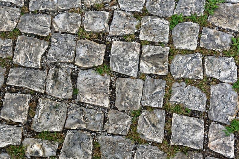 老大卵石石头 库存图片