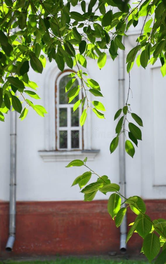 老大厦的被成拱形的窗口 免版税图库摄影