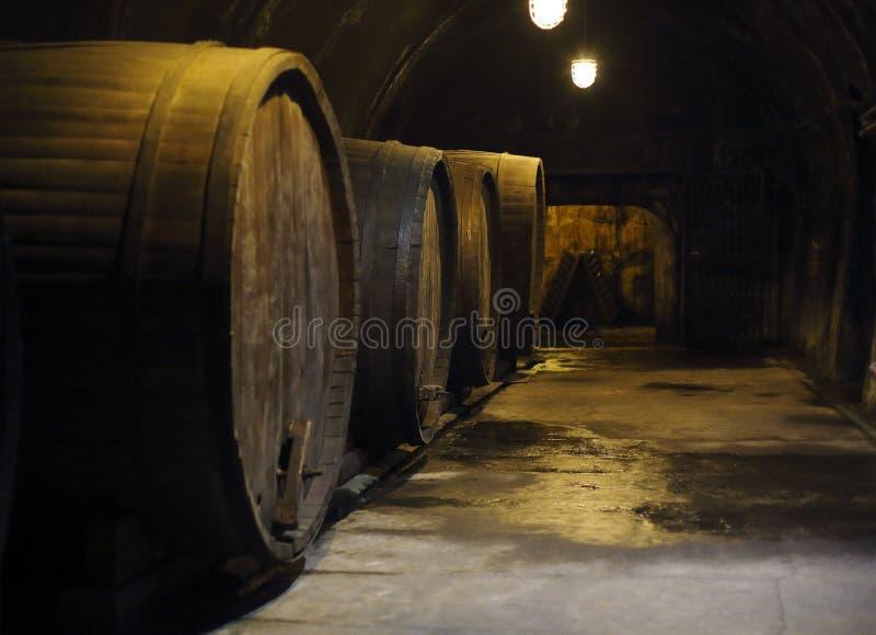 老大橡木桶在酿酒厂地窖里 免版税库存图片
