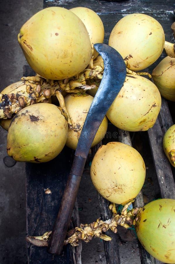 老大砍刀和椰子在木桌上 免版税库存照片