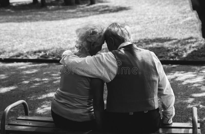 老夫妇坐长凳在公园 祖母和祖父他们的金黄结婚纪念日庆祝的 ?? 免版税库存图片