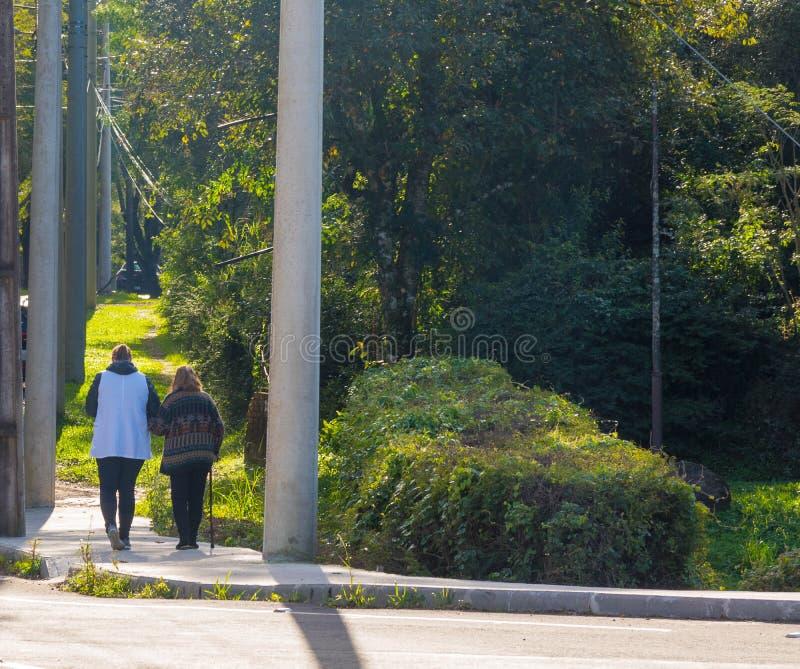 老妇人和她早晨漫步02 免版税库存图片