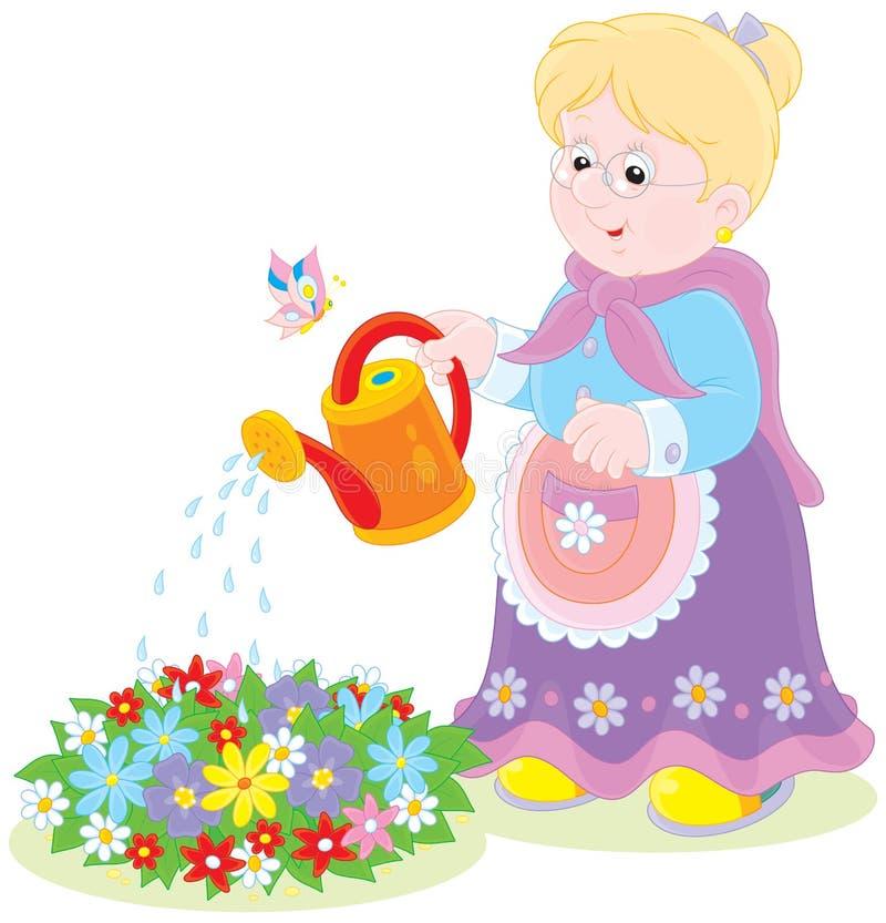 老婆婆浇灌的花 皇族释放例证
