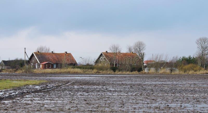 老家和多雪的领域,立陶宛 免版税库存照片