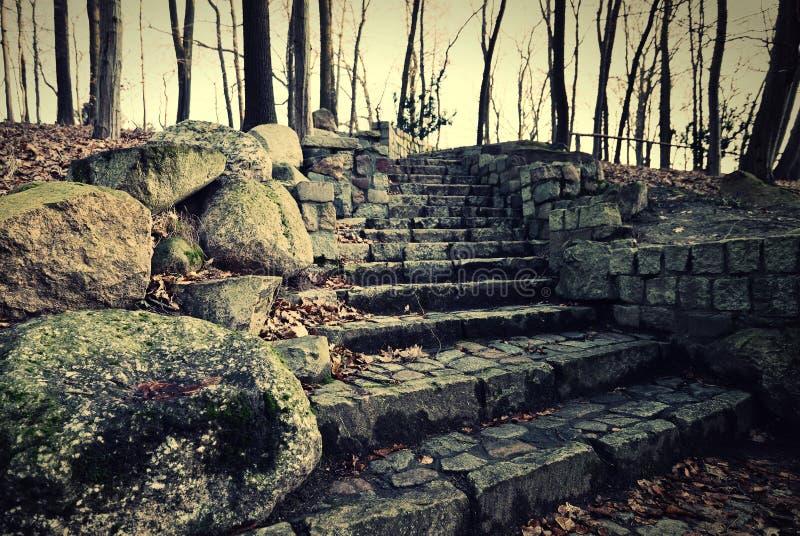老岩石台阶 库存图片