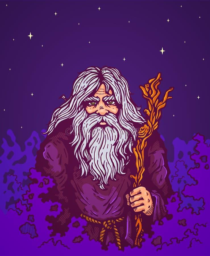 老巫师 库存例证