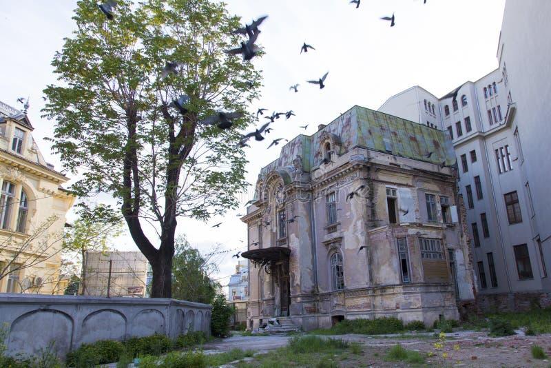 从老布加勒斯特的大厦 图库摄影