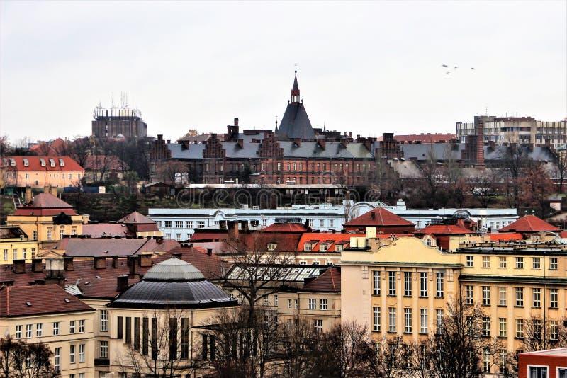 老布拉格城市视图从Vysehrad的边的在冬天在1月 免版税库存照片