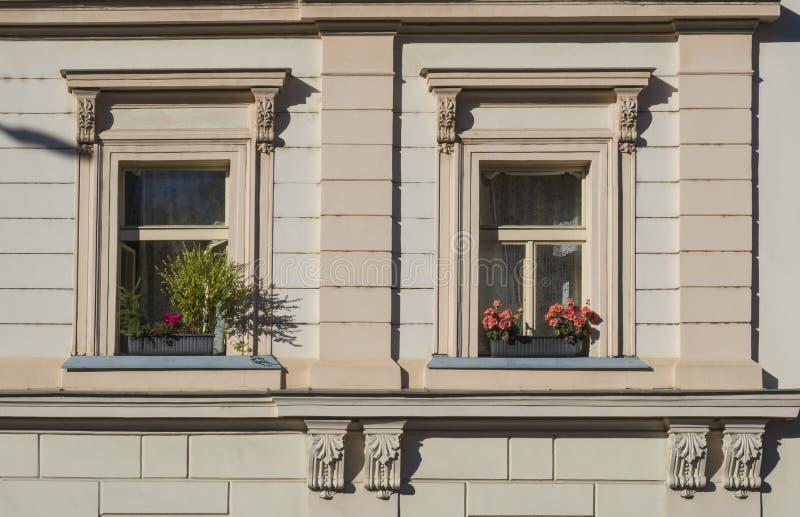老布拉格经济公寓住宅Windows米黄门面细节有花箱子的 免版税库存图片