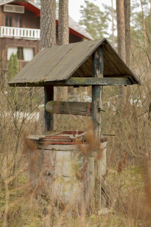 老很好在森林里在房子附近 免版税库存图片