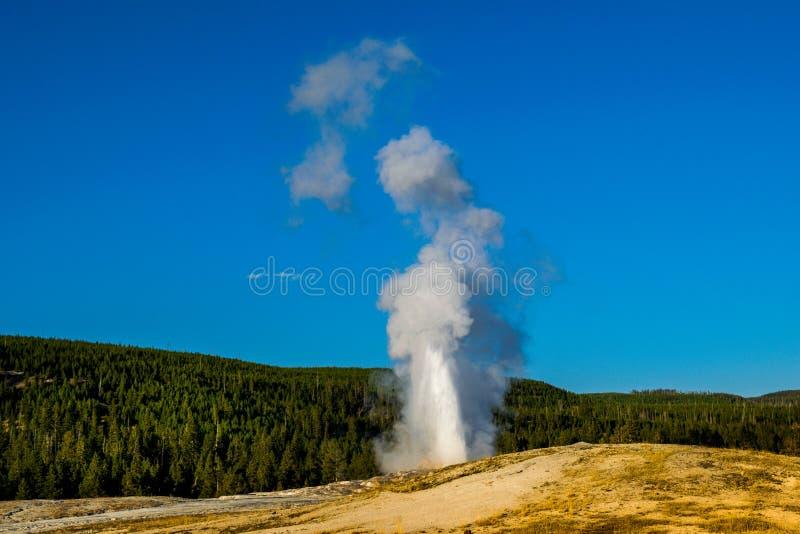 老忠实的喷泉-黄石国家公园,怀俄明 免版税图库摄影