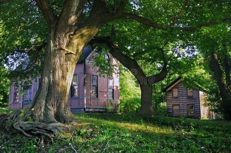 老房子在里士满城镇 免版税库存图片