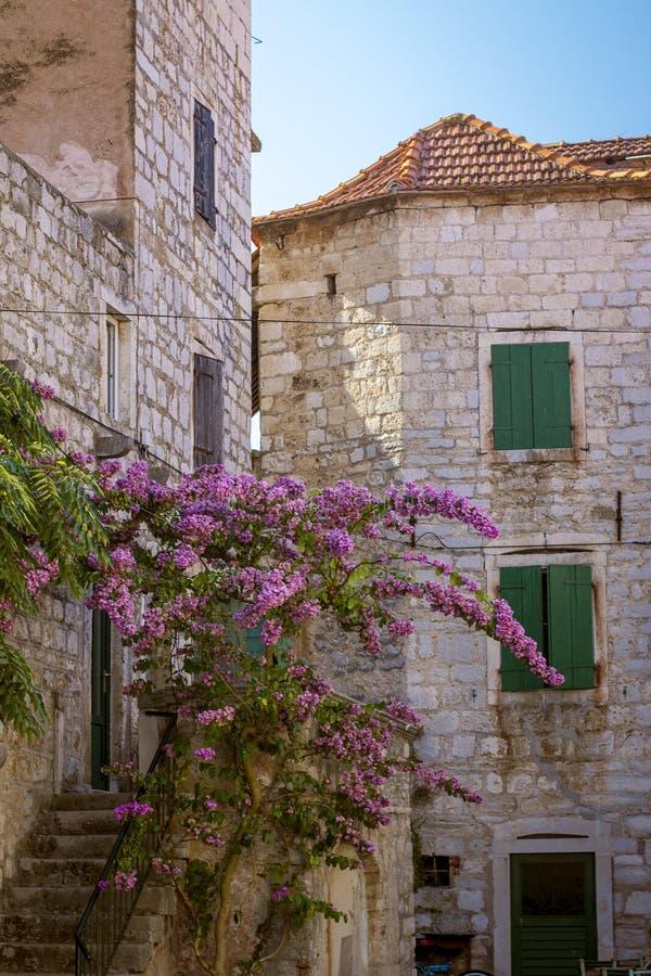 老房屋建设在赫瓦尔岛海岛,克罗地亚老镇  免版税库存图片