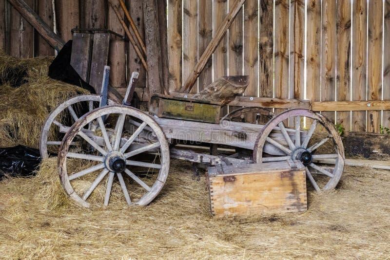 老拉货车的马 免版税库存图片
