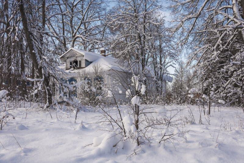 老放弃了在用雪盖的树中的木房子 库存照片